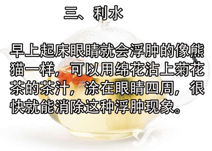 菊4.jpg