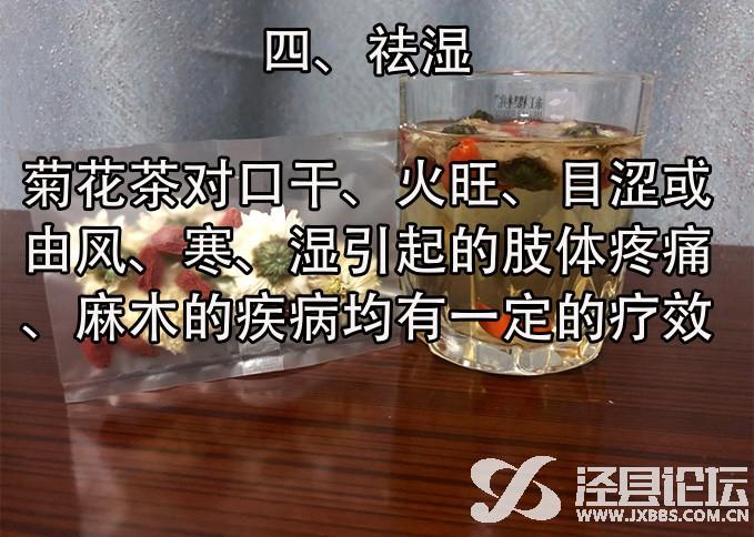 菊5.jpg